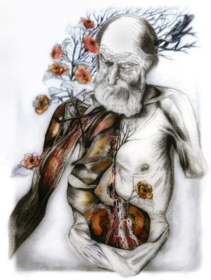anatomical painting, dissected old man, bird, red flowers