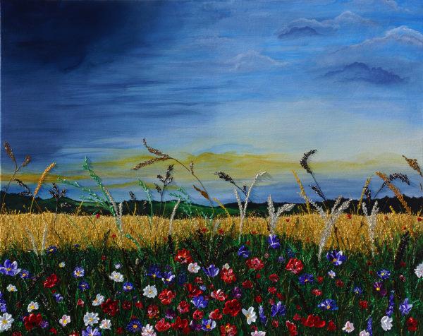 Field, flowers, rain cloud, grain field
